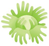 c2y_cabbage.jpg