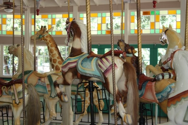 The Carousel in City Park is a WOW! Look closely:    THE FLYING HORSES  have real horsehair tails