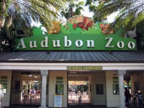audubon-zoo (1).jpg