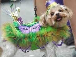 pups parade 2.jpg