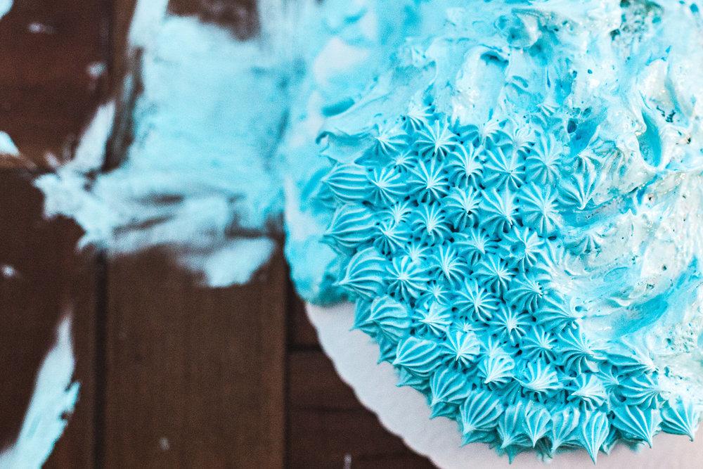 48 Smash_the_Cake.jpg