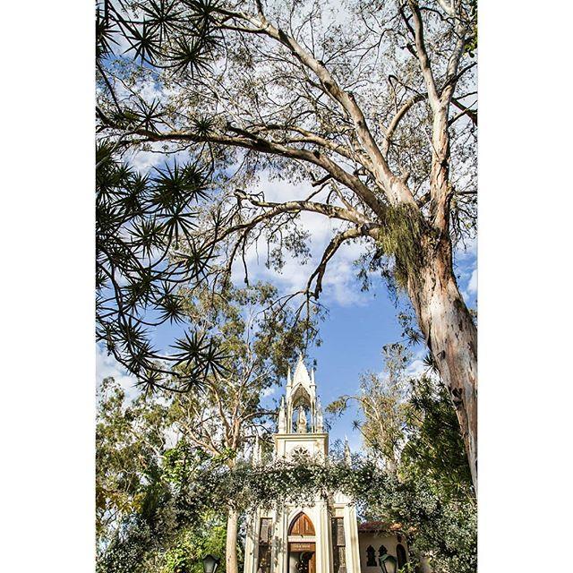 Igreja linda, arco floral maravilhoso, natureza abençoada 🌾 uma combinação para derreter todos os corações 💒 ▪️ ▪️ 💐 Designer floral @ateliercolorato ▪️ 📸 Fotografia por @lileruiz ▪️ ▪️ ▪️ ▪️