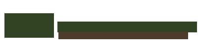 SEF-logo-1.png