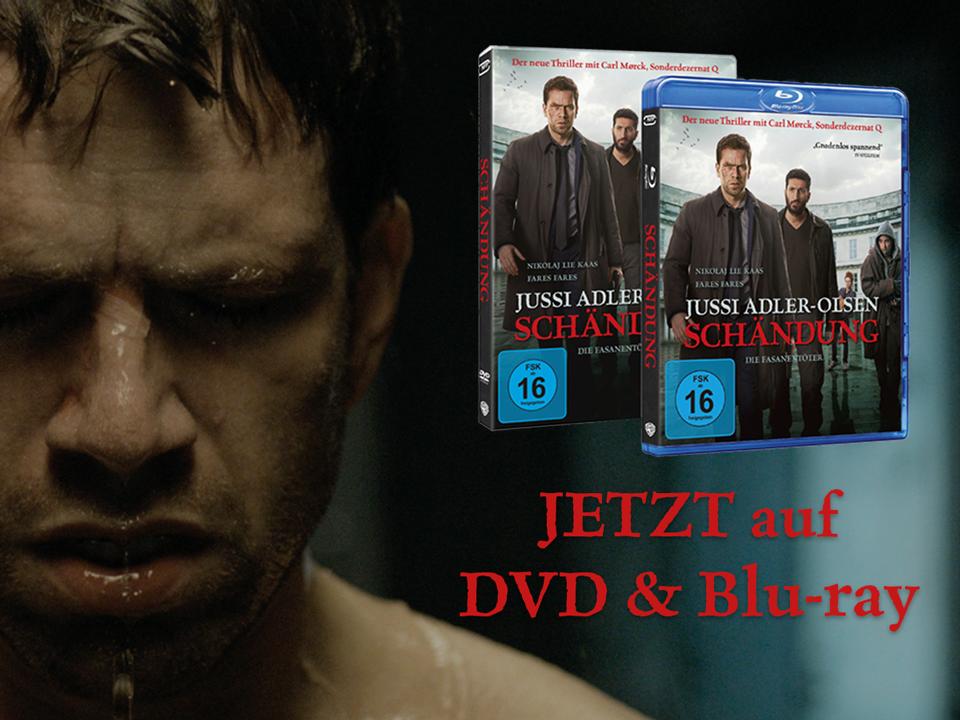 150717_Schändung_Werbung-DVD2.png