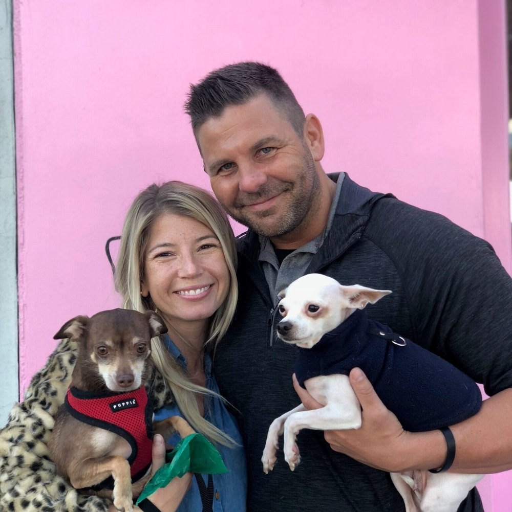 Gwen was one of our mommy-dogs who loves nothing more than to cuddle up under the blankets! We are so excited for her new Forever home surrounded by all the love in the world!