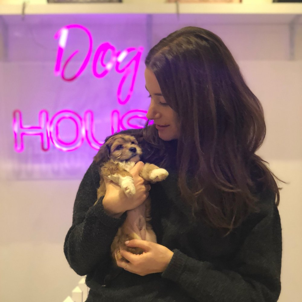 Lauren Vanderpump was one of the staff's favorite pups and the biggest cuddle bug. We know she is going to enjoy the best life with her new mom! We can't wait to see how you grow Lauren!