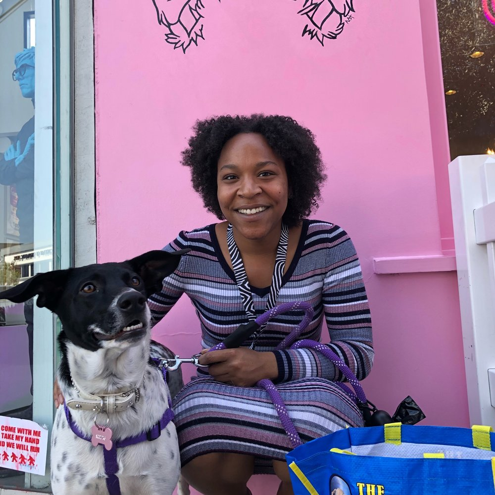 Scout was one of our Hurricane Harvey Dogs who has been with us since November. She has been waiting and waiting for the right home and has finally found her forever home! We can't wait to see the rest of your amazing life Scout!
