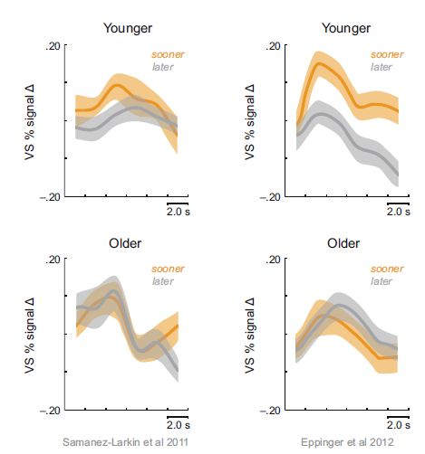 Figure 1. In two recent studies, young adults show reduced activation of the ventral striatum (VS) for delayed rewards (grey) compared to rewards available now (orange), whereas this oversensitivity to immediacy was not present in older adults. Older adults showed equivalent activation of the VS for rewards available at short and long delays. Figures adapted from Samanez-Larkin et al. (2011) and Eppinger et al. (2012).