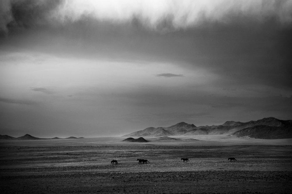 Namibia-2.jpg