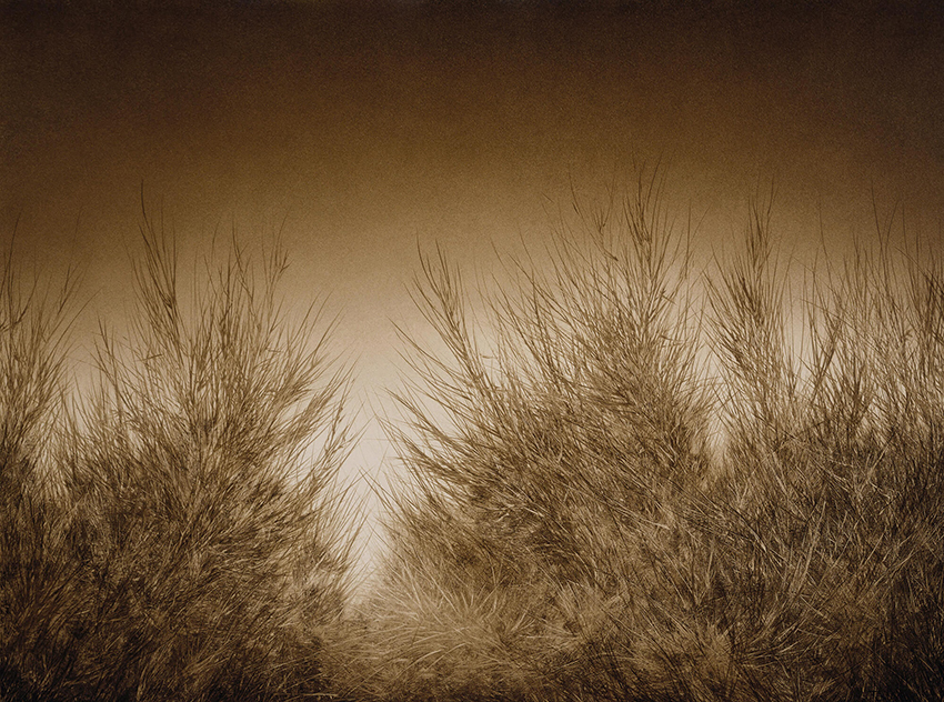 Joanne-Teasdale-Gentle noise.jpg