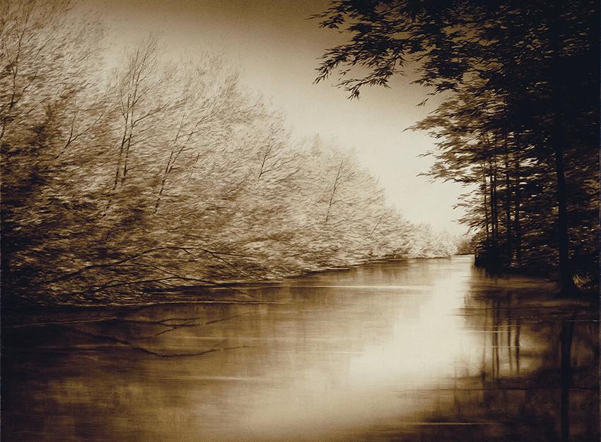 Joanne-Teasdale-The Bayou.jpg