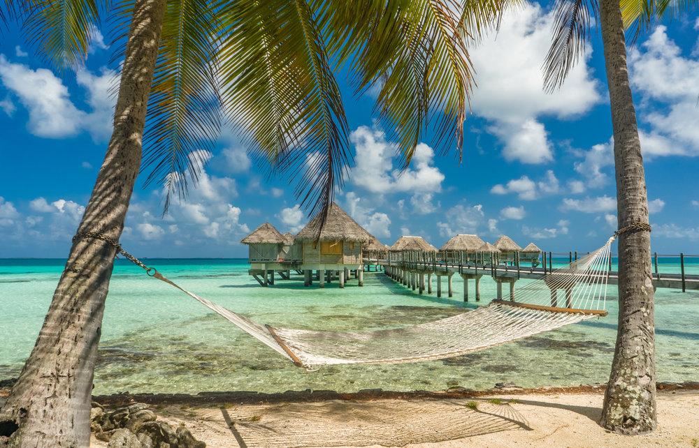 Hammock-in-a-beach-in-Tikehau,-Tahiti-503591130_3946x2533.jpeg