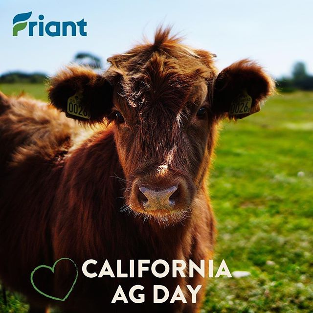 Happy California Ag Day! We are so thankful for our state's amazing #agriculture sector! #AgDay2019