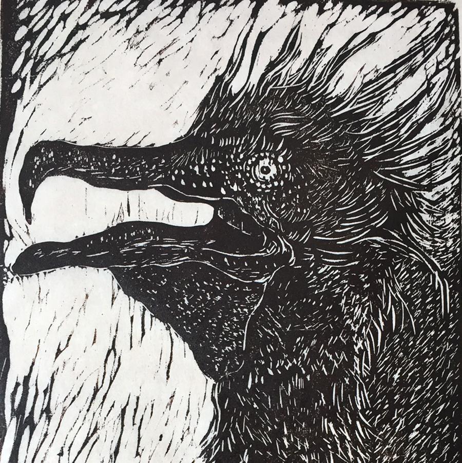 Cormorant. Woodcut print by Jacqueline WIlson.