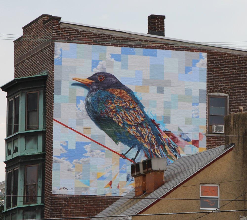 Bird on a Wire (street view)- by Matt Halm.jpg