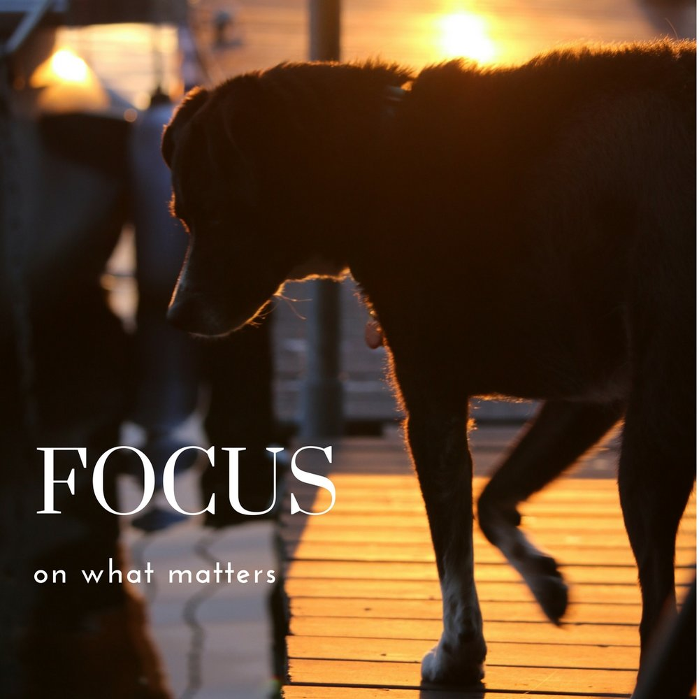 Focus on what matters.jpg