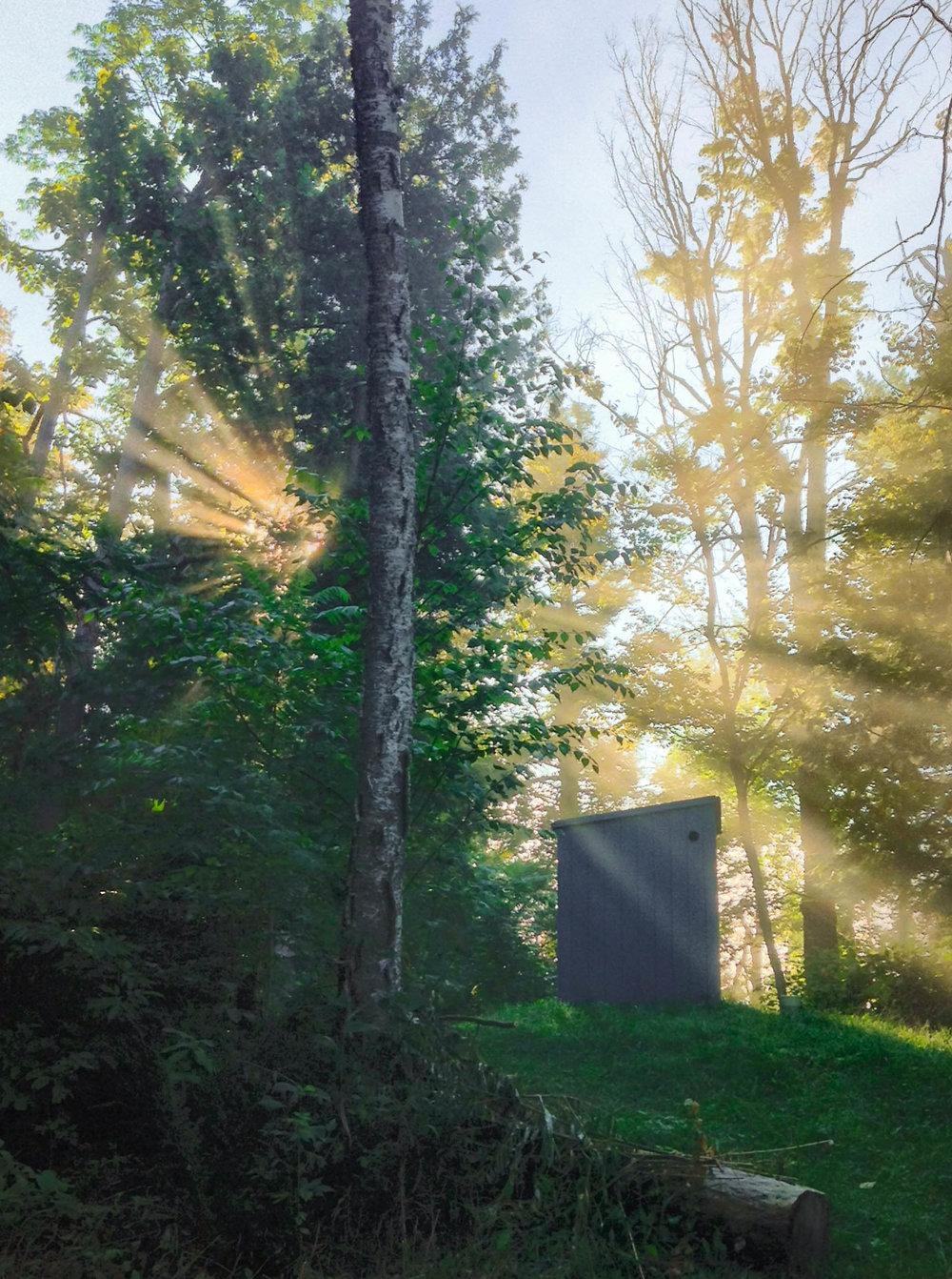 Sunlight streaming.jpg