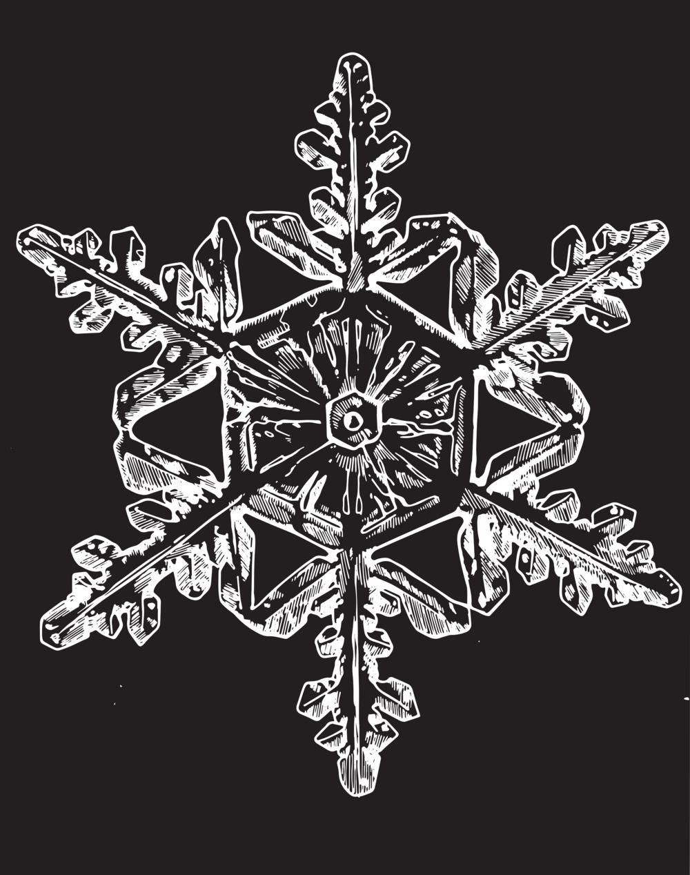 vect_snowflake.png
