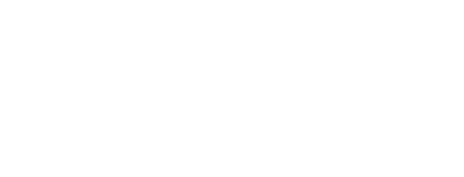 Brave by Faith Travel