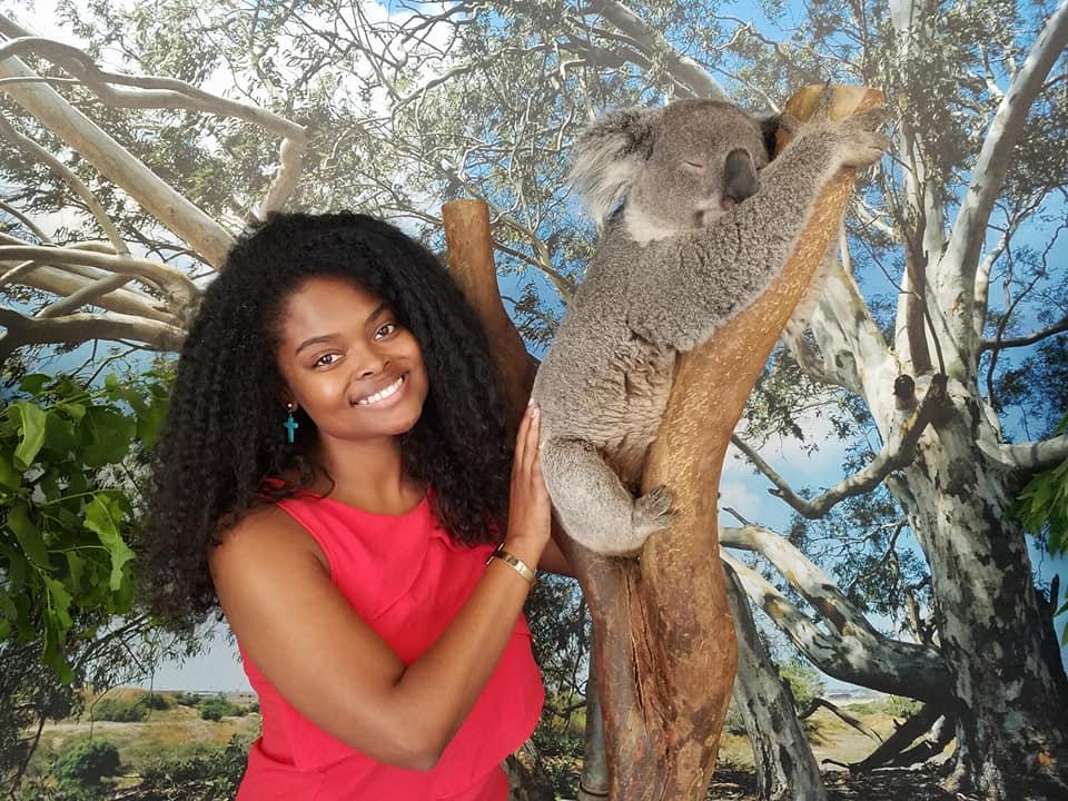 koala photo.jpg