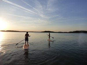 Sunset Paddle Board tour with Island Head Watersports