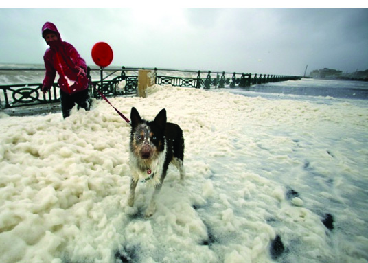 """A lone dog walker struggles to get through the sea foam as waves batter the seafront in Hove, West Sussex"" Photograph: Ciaran Mccrickard/Connors Brighton - The Guardian - 23 December 2013 Obviously they made it sound more dramatic! In reality, the foam was quite a distance from the sea!"
