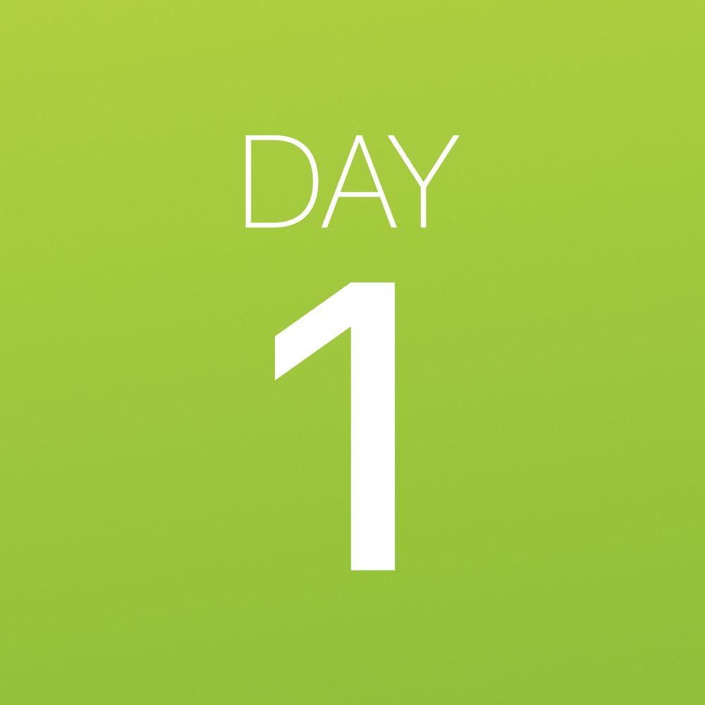 Renew - Day 1.jpg