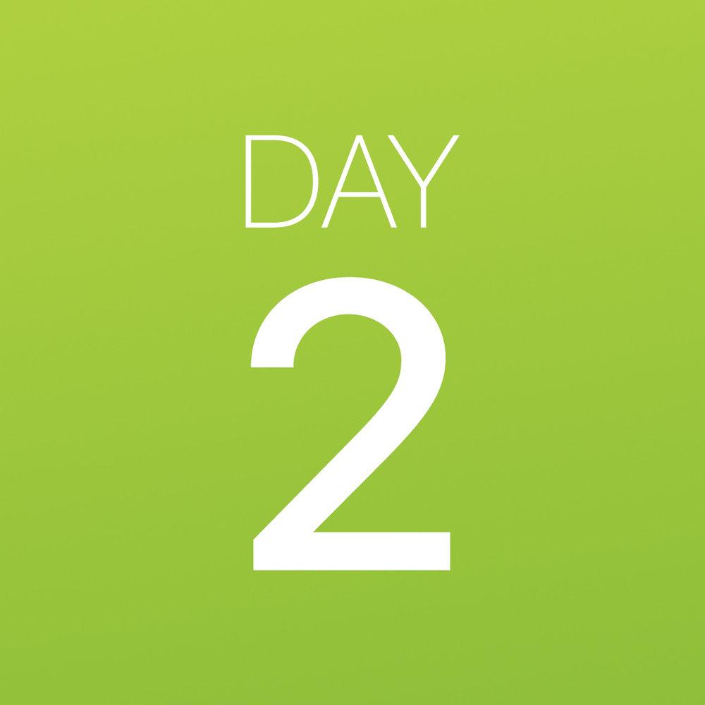 Renew - Day 2.jpg