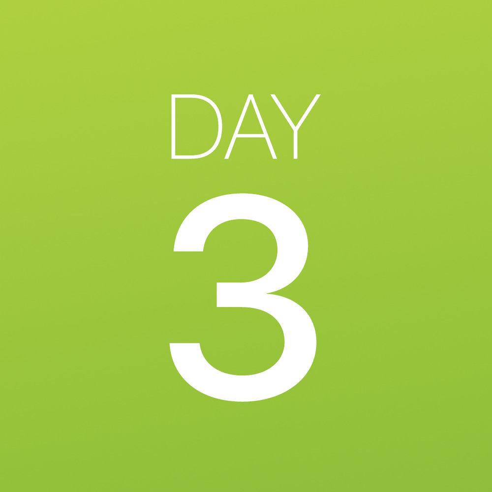 Renew - Day 3.jpg