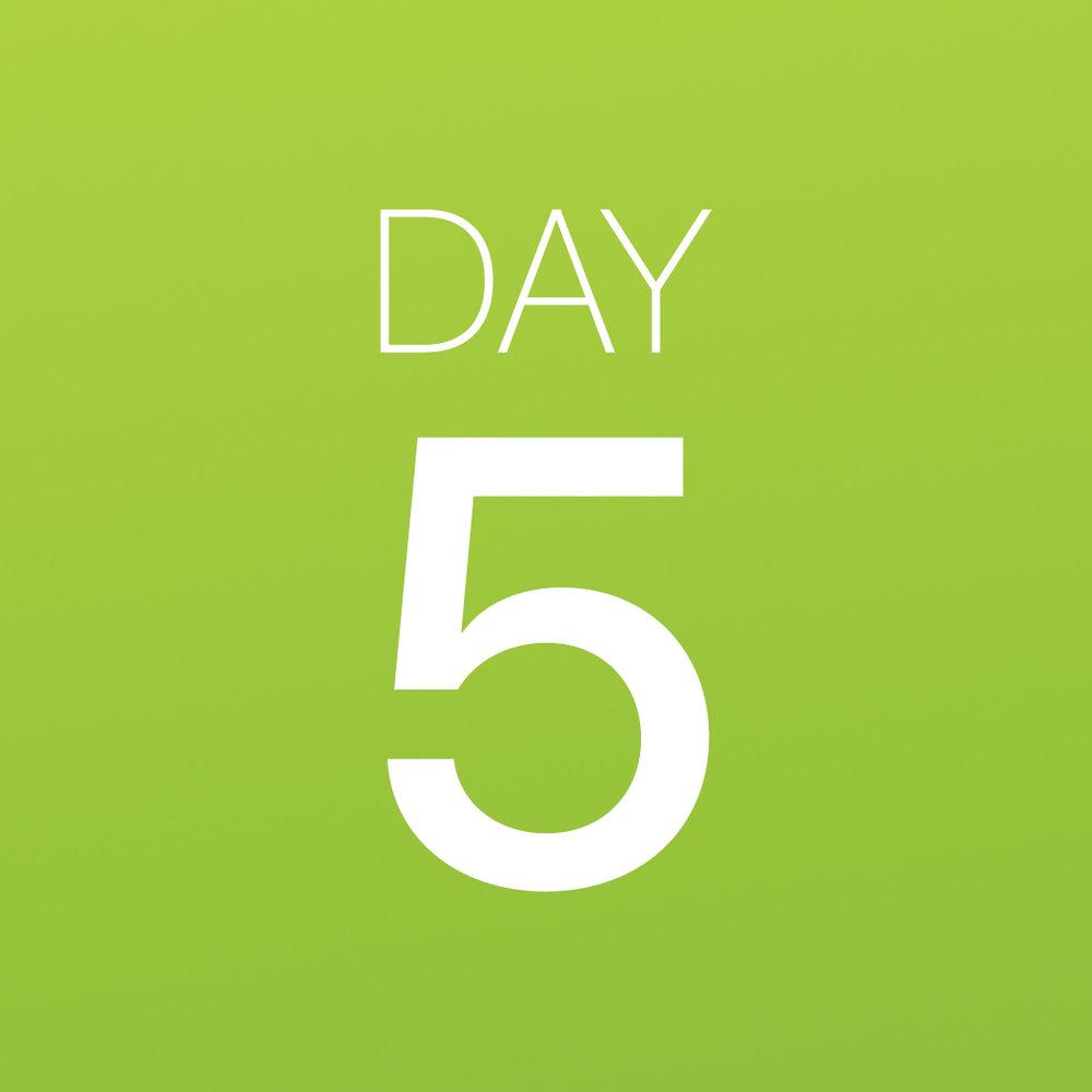 Renew - Day 5.jpg