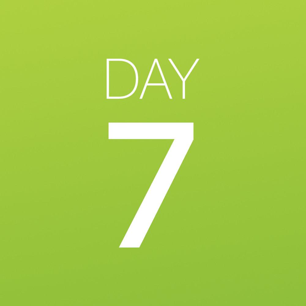 Renew - Day 7.jpg