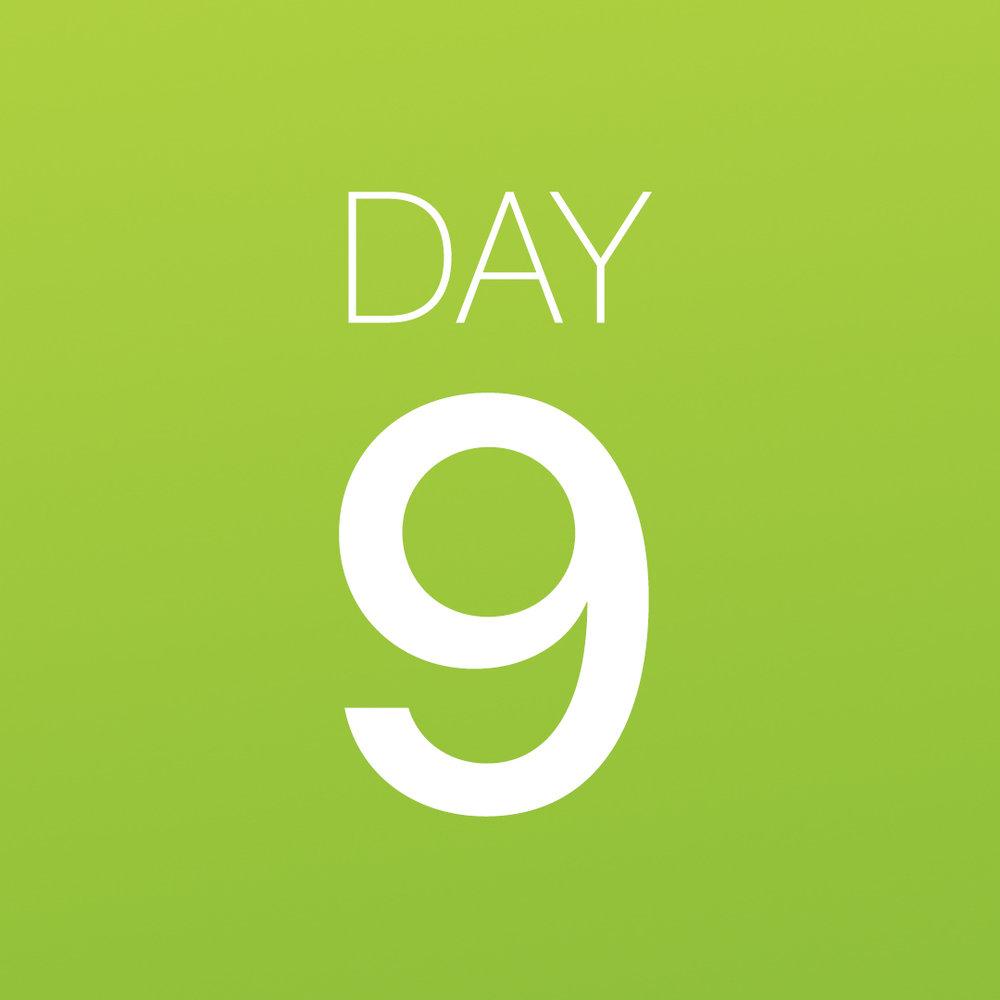 Renew - Day 9.jpg