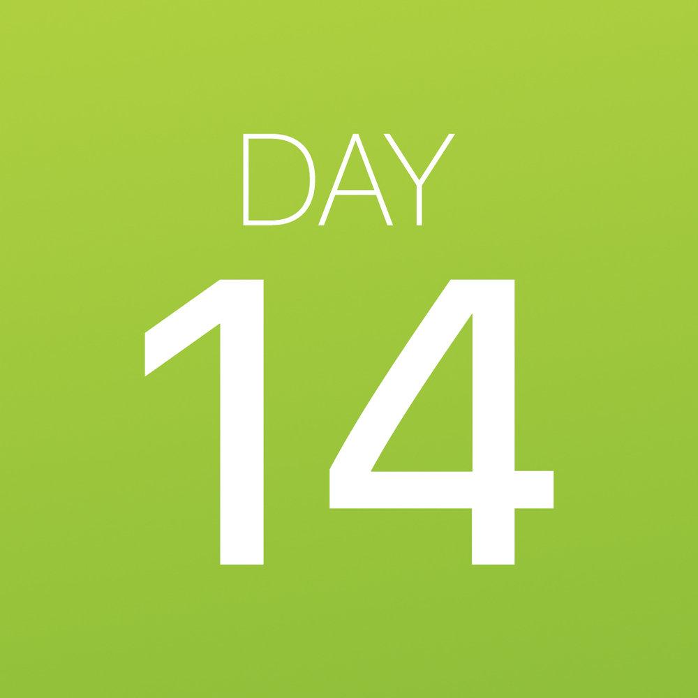 Renew - Day 14.jpg