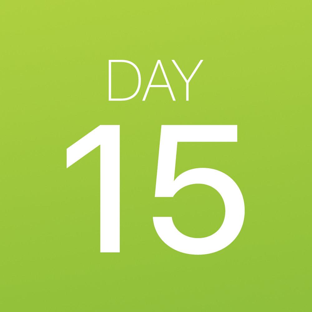 Renew - Day 15.jpg