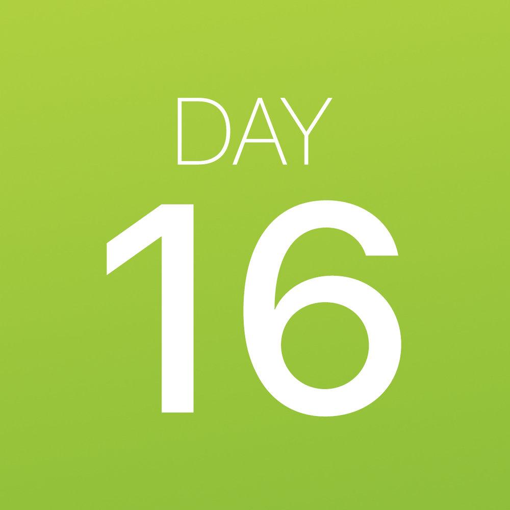 Renew - Day 16.jpg