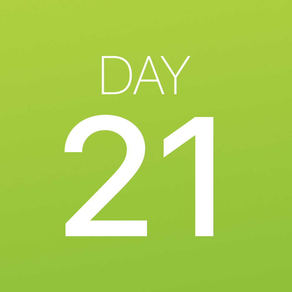 Renew - Day 21.jpg