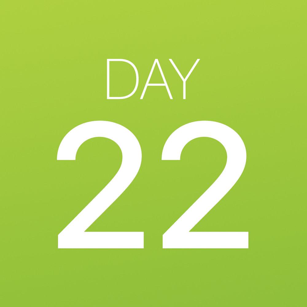 Renew - Day 22.jpg