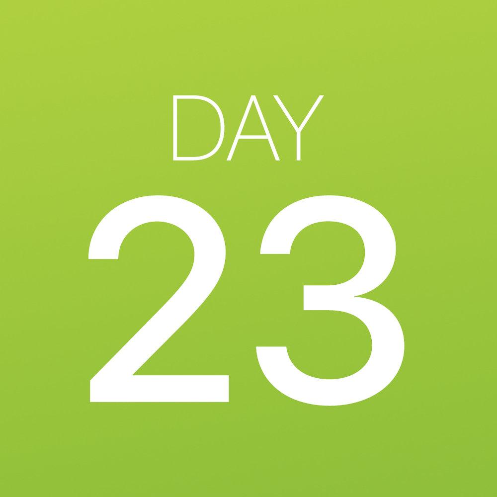 Renew - Day 23.jpg