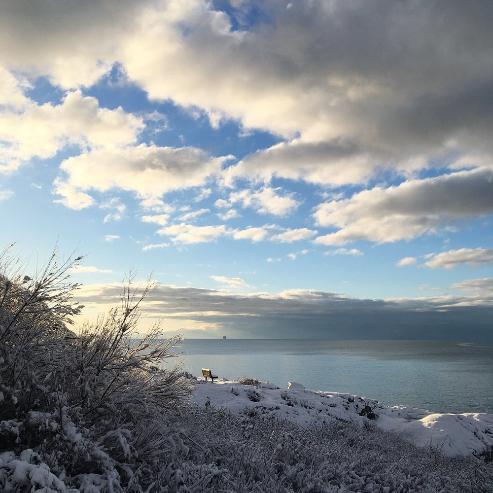 Saxe-Point_winter_5.JPG