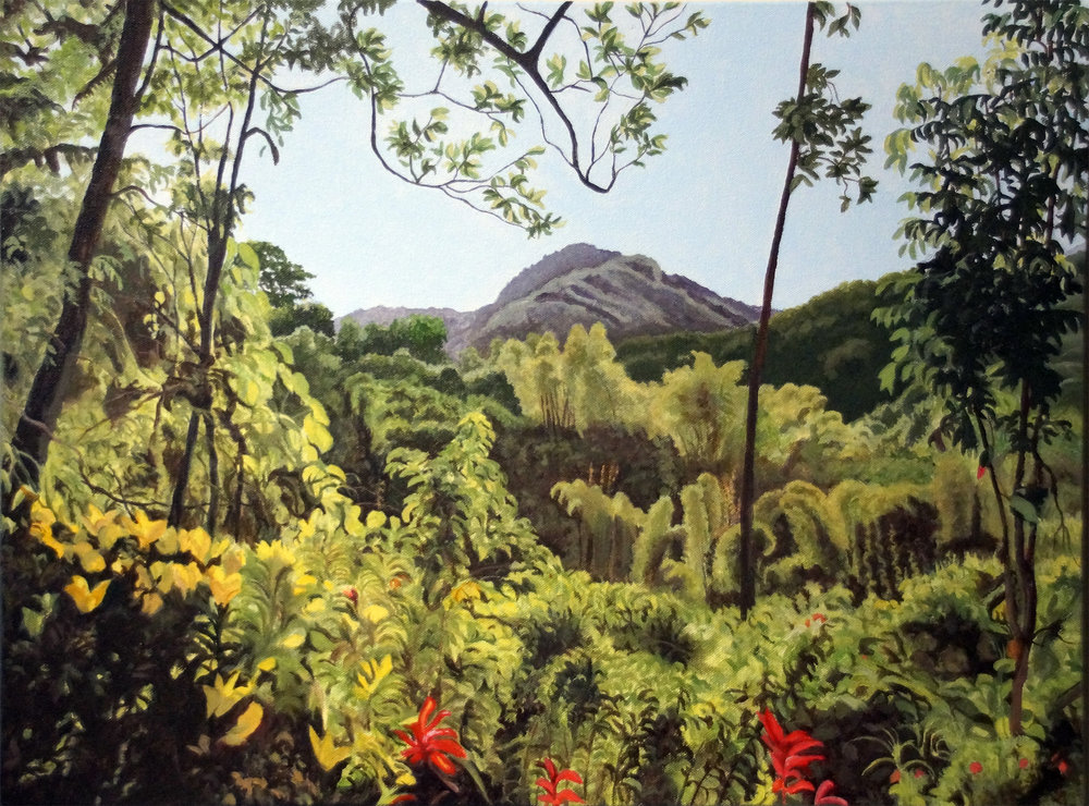 "Fiji Hiking View, Water Soluble Oil Paint, 19.5"" x 25.5"""