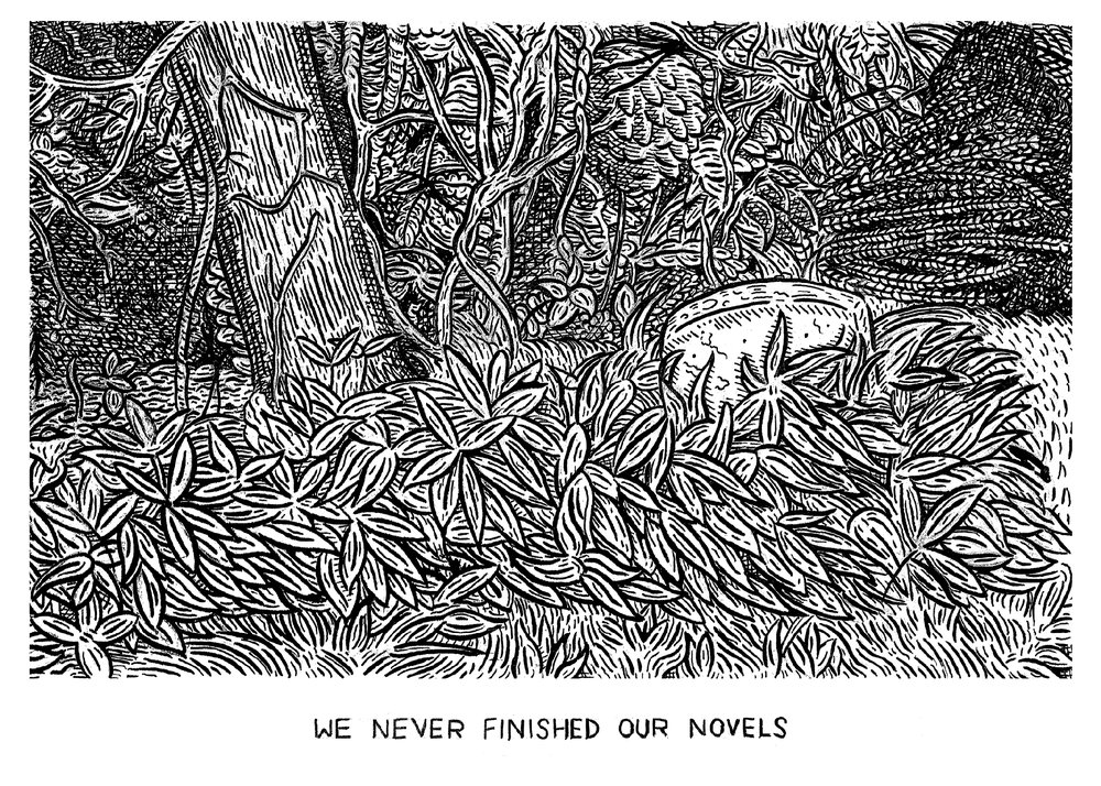weneverfinishedournovels-PRINT.jpg