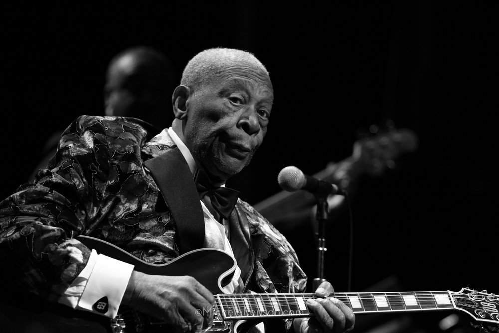 BB King Santa Cruz Civic IMG_4017