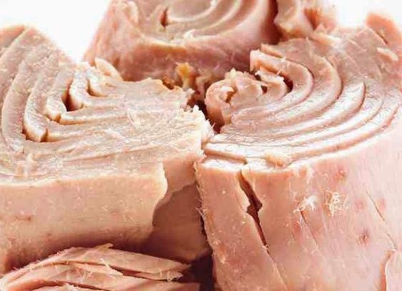 preserved tuna fish