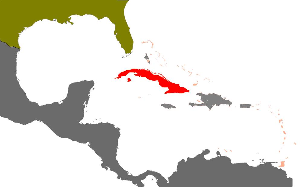 Spanish American War Cuba