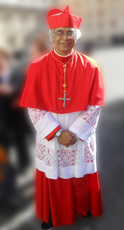 Garb worn by Cardinals