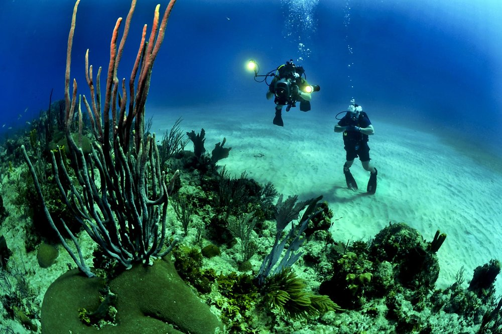 Diving is on the top of most visitors' lists, but you can still find places that are untouched.