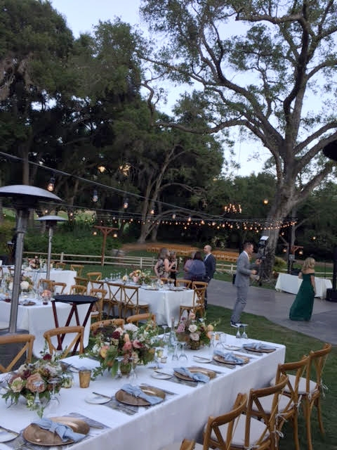 UNDER THE OAKS AND TWINKLING LIGHTS