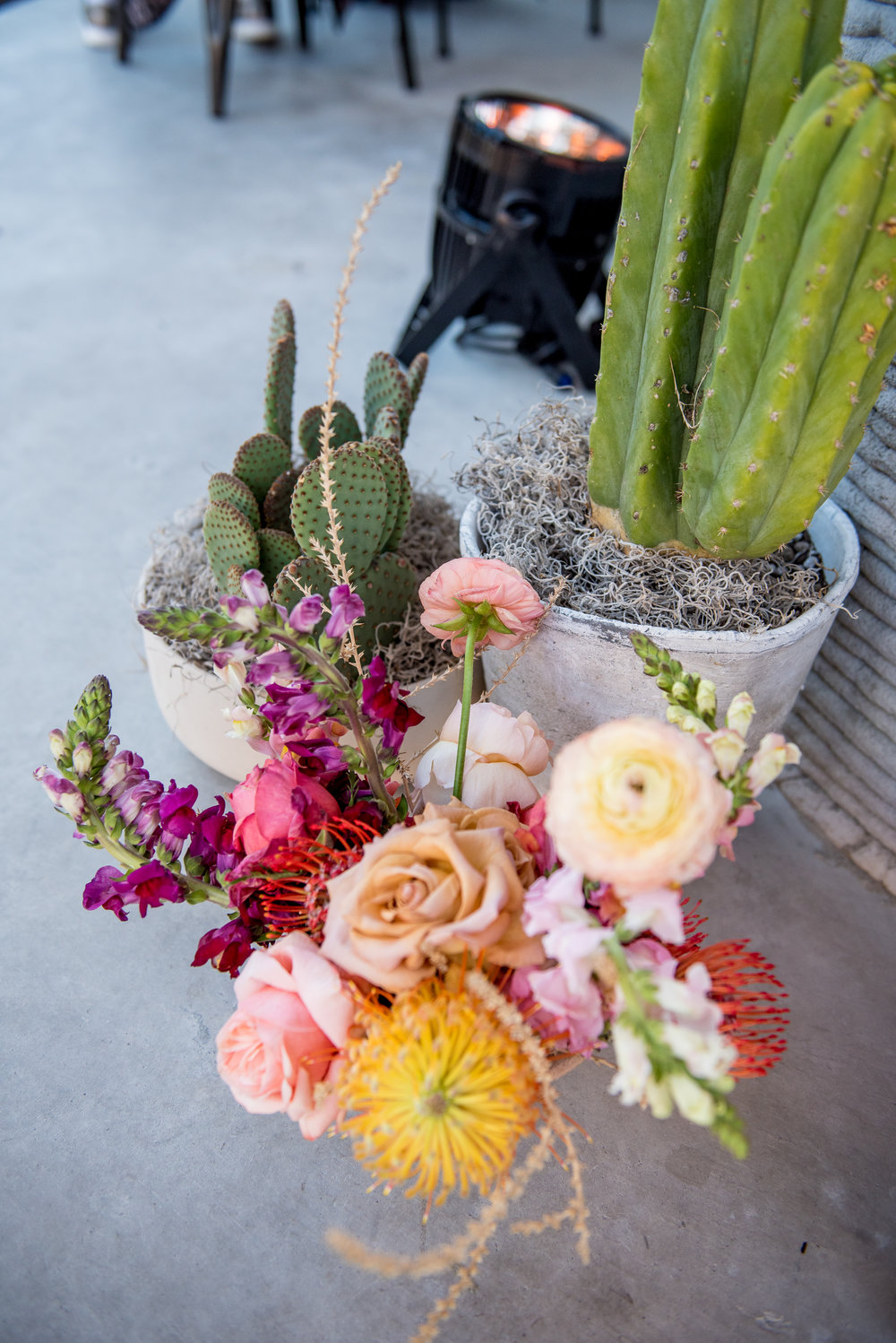 cactus flower arrangement