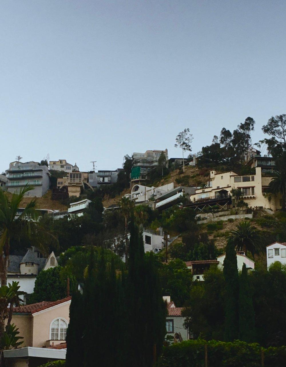 The Hollywood Hills (photo by Meghan Ianiro)