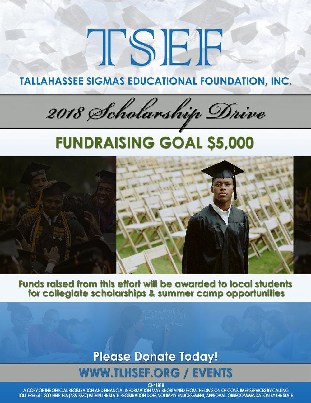 fundraising flyer for TSEF 2018.jpg